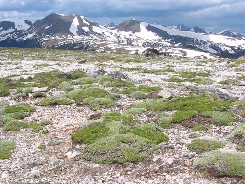 rocky-mountain-national-park2