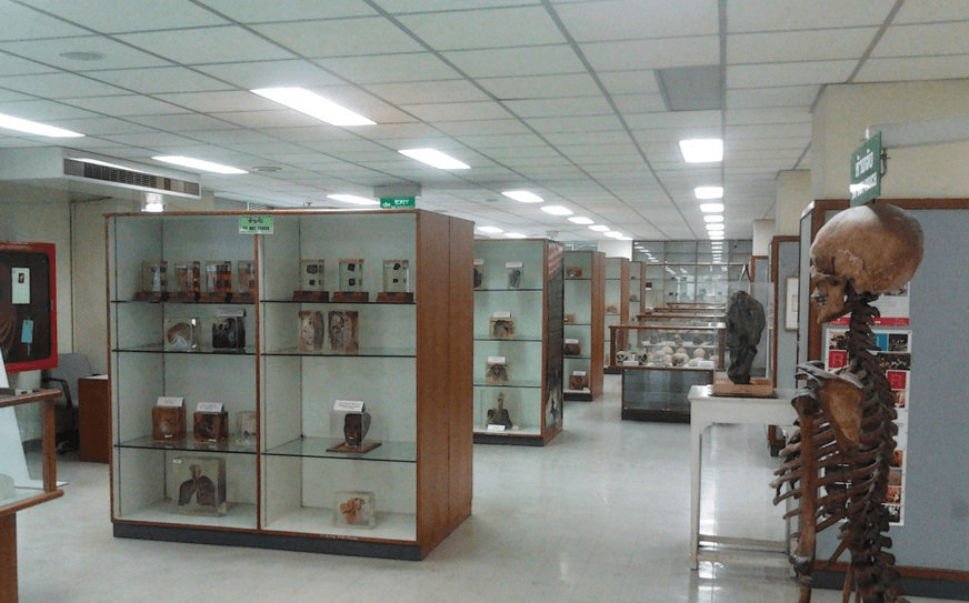 Forensic museum of Bangkok