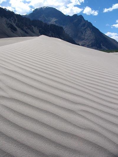 Sand dune in Nubra Valley, Ladakh, India
