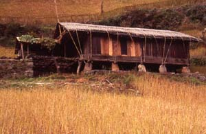 Solid timber house of the Lhomi Tibetans