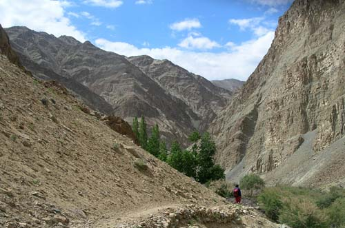 Ladakh landscape