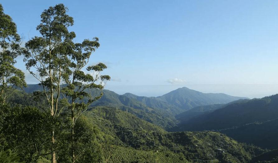 Blue mountain peak, jamaica