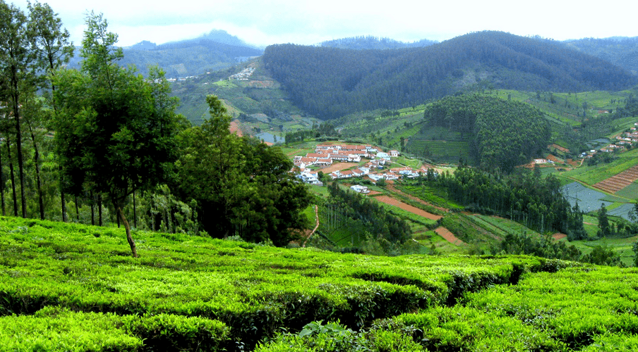 Ooty hill resort - A romantic getaway